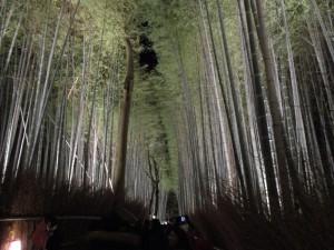 1-嵐山2