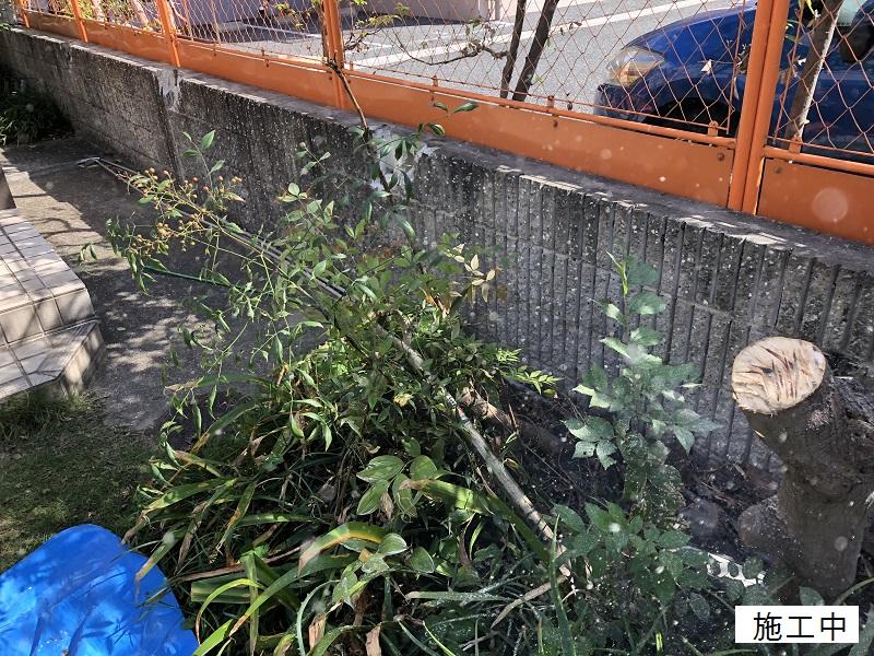 西宮市 樹木撤去イメージ06