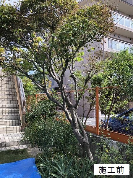 西宮市 樹木撤去イメージ02