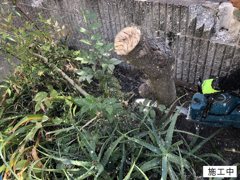西宮市 樹木撤去イメージ05